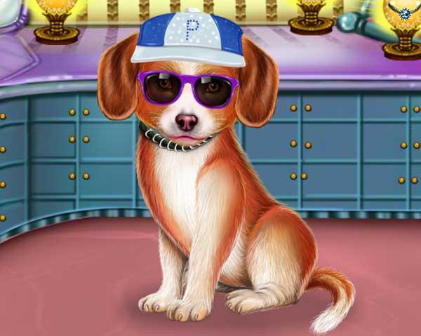 pretty-puppy-care0