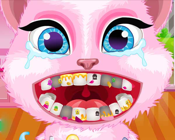 cute pet dentist salon0